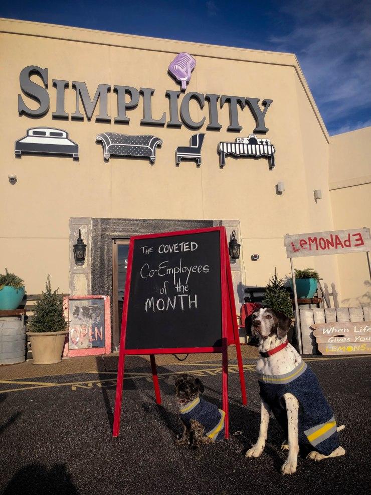 dogs pat coslett simplicity evansville